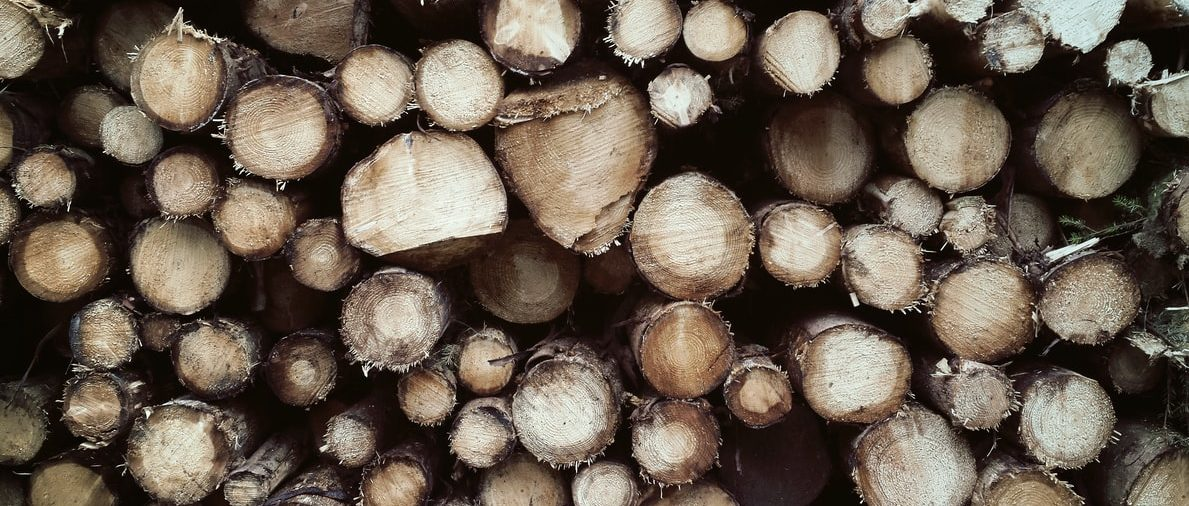 Oformljena sekcija drvoprerađivača pri Hrvatskoj obrtničkoj komori